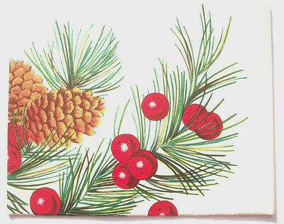 Holly and pine cones branch Christmas vintage greeting card C*