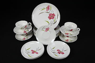 Stetson Marcrest MCM Dinnerware Handpainted Pink Gray Green Flowers 22 Pcs
