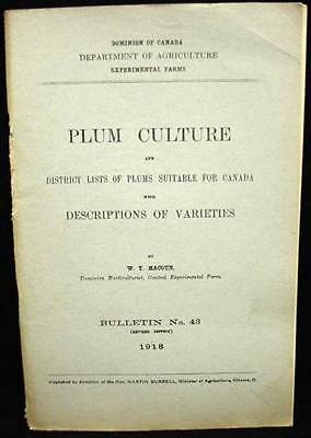 1918 Canadian Agriculture Book Plum Culture Varieties Suitable for Canada