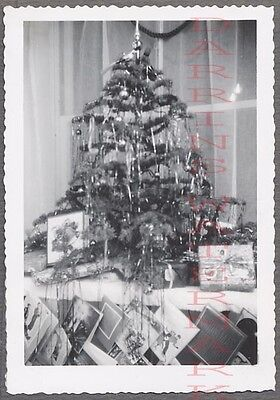 Vintage Snapshot Photo Small Christmas Tree & Holiday Cards 708691