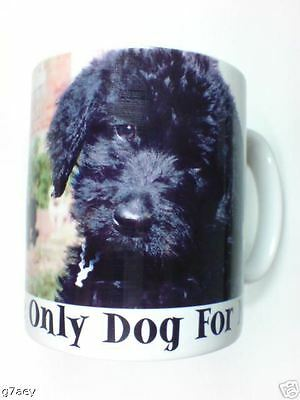Black Labradoodle The Only Dog For Me  Coffee Mug No1