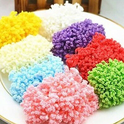 144Pcs Pack Dried Dry Flowers Baby's Breath Crafts DIY Jewelry Bracelet Making
