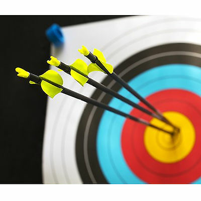 10x Fibreglass Archery Arrows with Steel Tip Suits Compound & Recurve Bow 31''