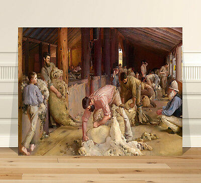 "Classic Australian Fine Art ~ CANVAS PRINT 36x24"" Shearing Rams by Tom Roberts"
