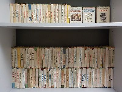 Job Lot Of Vintage Observer Books - 100 Books Collection! (ID:39802)