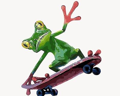 Painting by Number kit Price Frog Playing Skateboarding Little Animal DIY BB7604