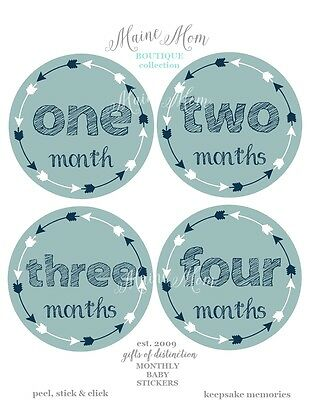 Tribal Monthly Stickers, Baby Month Milestone Stickers Arrow Nursery Photo Prop