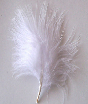 Bright White Marabou Feathers - Large Size, Approx 20 to 25 per pack