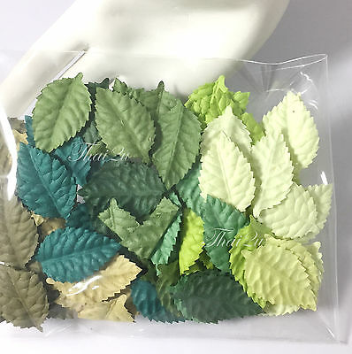 100 Green Mixed NO stem Leaves Paper Crafts Scrapbooking DIY Card  ZQL20 - 839