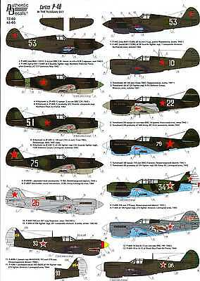 Authentic Decals 1/48 CURTISS P-40 WARHAWK in the Russian Sky