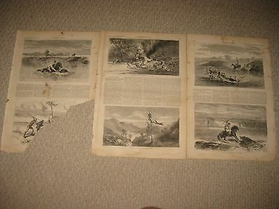 Lot Of 3 Antique 1872 Hunting In India Print Tiger Boar Fine Views Orientalist N