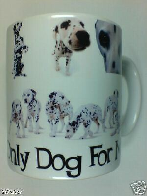 Dalmatian The Only Dog For Me  Coffee Mug No1