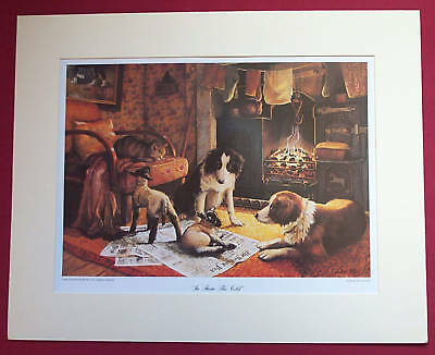 BORDER FINE ARTS - IN FROM THE COLD - collie dog farm countryside nature PRINT