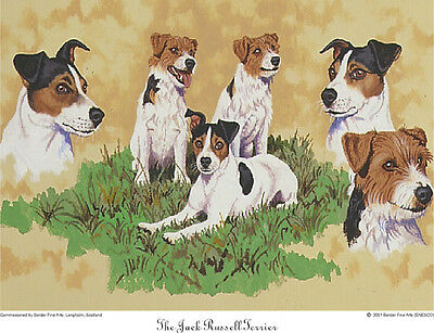 Border Fine Arts - The Jack Russell Terrier - Dog Print
