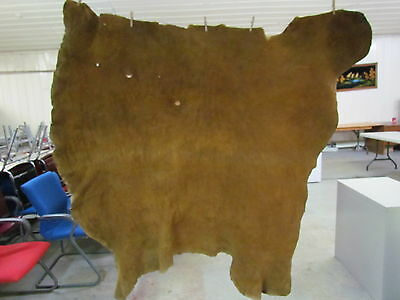 "Whole Moose Hide Native American Dark Color Home Tanned Hide Approx 62"" By 54"""