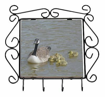 Canadian Geese and Goslings Wrought Iron Key Holder Hooks Christmas Gif, AB-G1KH