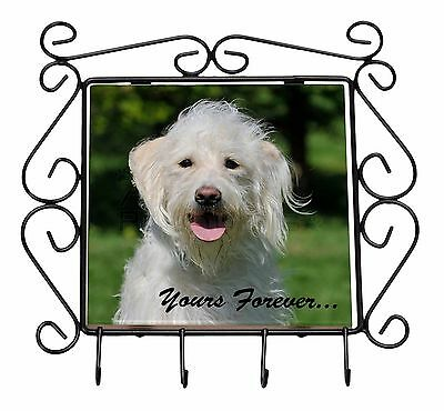 White Labradoodle 'Yours Forever' Wrought Iron Key Holder Hooks Chris, AD-LD3yKH