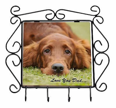 Red Setter Dpg 'Love You Dad' Wrought Iron Key Holder Hooks Christmas , DAD-93KH