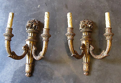 Splenid Pair of Antique Carved Gilt Wood Wall Chandeliers Candle Holders