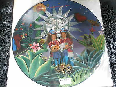 "12"" TEARS FOR FEAPICTURE DISC RS limited edition ADVICE FOR THE YOUNG AT  HEART"