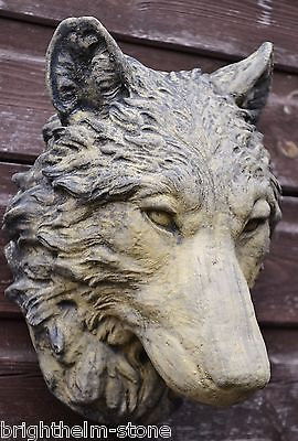 Wolf Head wall plaque timberwolf various colors garden ornament  25cmH
