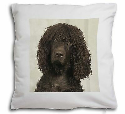 Irish Water Spaniel Dog Soft Velvet Feel Scatter Cushion Christmas G, AD-IWS-CPW