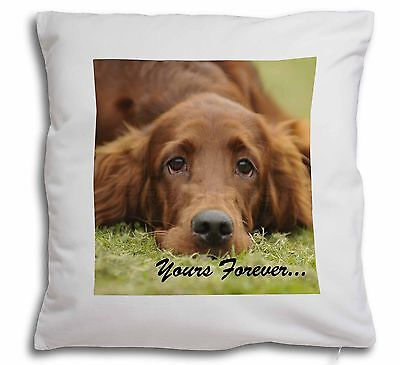 Red Setter Dog 'Yours Forever' Soft Velvet Feel Scatter Cushion Chr, AD-RS2y-CPW