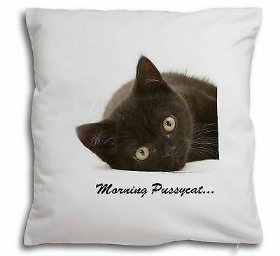 Black Cat 'Morning Pussycat' Soft Velvet Feel Scatter Cushion Christ, MP-185-CPW