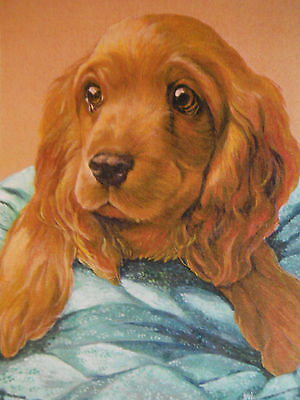 COCKER TOO 8X10 Dog print of Cocker Spaniel by Artist Sherry Shipley