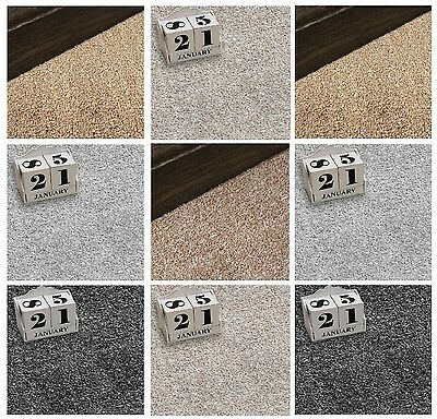Twist Pile Carpet | 4m Wide | 12mm Thick Felt Backed | 9 Colours From £7 per m2