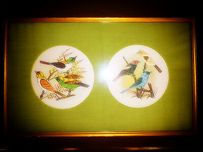 Antique Chinese 6x PAINTED SPARROW BIRDS ON FRAMED SILK Colourful Vibrant Pretty