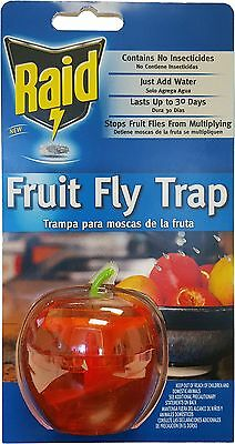 Raid red apple Fruit Fly Trap kitchen counter no Insecticides indoor FFTA-RAID