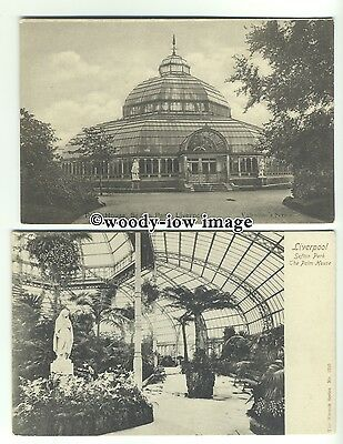 tp9665 - Lancs - Two Cards, Palm House/ & Interior, Liverpool - Postcard