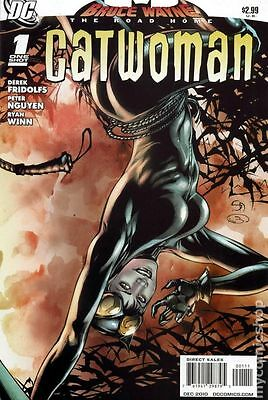 Bruce Wayne The Road Home Catwoman (2010 DC) #1 VG LOW GRADE