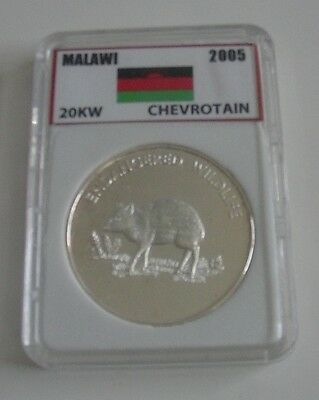 2005 Malawi Endangered Wildlife Chevrotain 10 Kwacha Coin