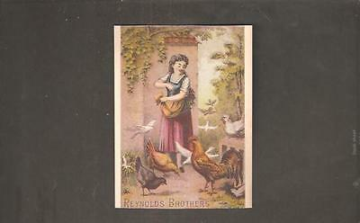 pk08238:Vintage Advertising Trade Card-Reynolds Brothers,Carbondale,PA