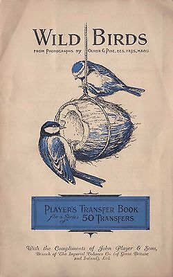 1930's John Player & Sons Wild Birds Transfer Book With Tobacco Cards Intact