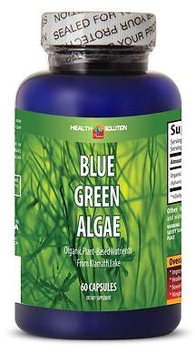 Usa Klamath Blue Green Algae 60 Capsules Tablets  Stem Cell Activator 1 Per Day