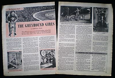 MOLLY REYNOLDS GREYHOUND RACING HOOK KENNELS NORTHAW POTTERS BAR ARTICLE c1955