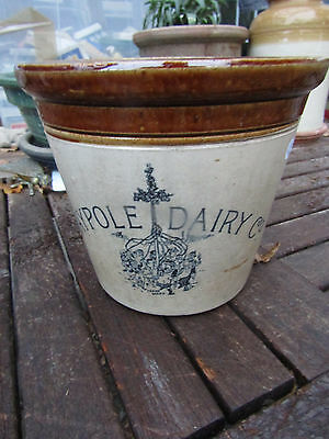 Scarce  Size 6lb ANTIQUE Victorian handled MAYPOLE DAIRY BUTTER CROCK  VGC