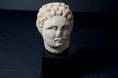 *Aphrodite Gallery* PORTRAIT BUST OF A MAN WITH CURLY HAIR, 1st-2nd Century A.D.