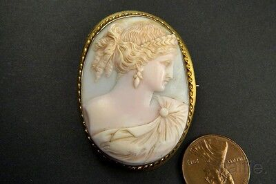 ANTIQUE 9K GOLD CARVED PINK CONCH SHELL HERA / JUNO CAMEO BROOCH c1900