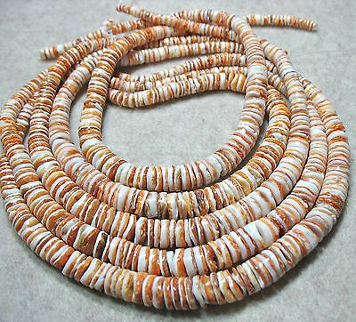 Natural Orange White Spiny Oyster Shell 4-10mm Graduated Heishi Beads 16""