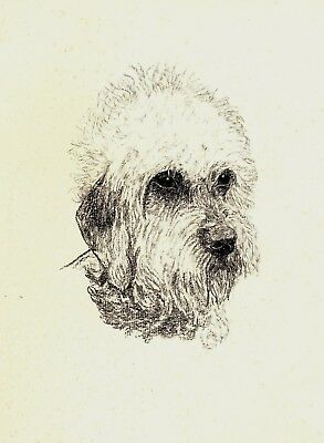 1935 DANDIE DINMONT Terrier Print Gallery Wall Art Gift for Dog Lover CFW 1831