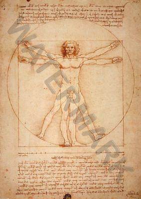 Leonardo Da Vinci A3 Art Print Photo Poster Amk3082
