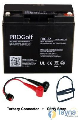 12V 22Ah AGM / GEL carrello Golf batteria per HILLBILLY MOTOCADDY w Torberry pio