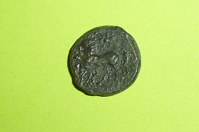 RARE Ancient GREEK COIN horse PANORMOS SICILY 250 BC-200 BC zeus star old scarce
