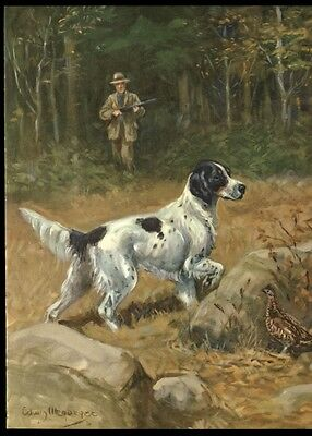 English Setter: after Painting by Edwin Megargee: Authentic 1953 Book Plate