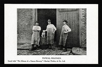Typical Draymen Barclay Perkins & Co Ltd History of Famous Brewery Postcard