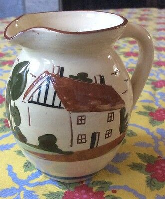 """Vintage Devon Pottery Jug With Words """"Waste Not Want Not"""""""